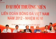 Vietnam's professional football crisis yet unresolved