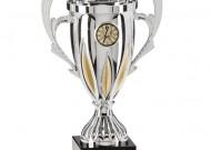 Thành tích Bóng đá TP. HCM năm 2012