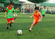 Festival bóng đá học đường TPHCM năm học 2017 - 2018, Quận 8