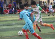 Liên đoàn bóng đá TPHCM thông báo tuyển dụng nhân viên