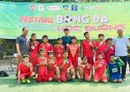 Festival bóng đá học đường Quận 2, năm học 2018 - 2019
